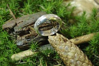 Ring der Elben, Silber 925 21,3 / 68
