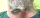 Bartperlen Perlen-Einfädler
