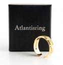 Atlantisring Ring der Schützer, Herrengröße Silber 925, vergoldet