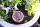 Schmuck Kästchen Midgardschlange, Wikinger, Bartperlen