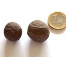 Handschmeichler Moqui Marbles, Größe M